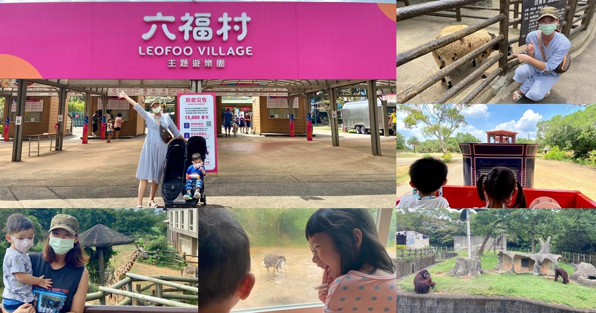 網站近期文章:新竹六福莊住宿分享-剛果藍天房。沒有住最貴房間也能看到長頸鹿